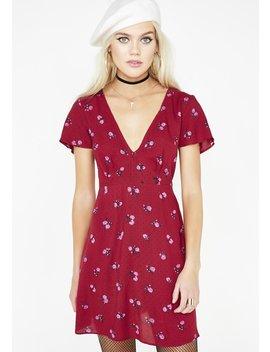 Rose Elara Dress by Motel