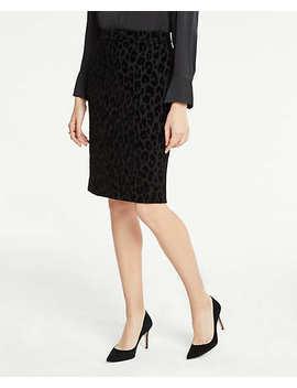 Velvet Spotted Pencil Skirt by Ann Taylor