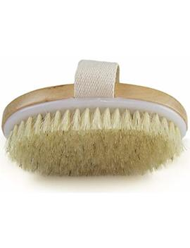 Dry Skin Body Brush   Improves Skin's Health And Beauty   Natural Bristle   Remove Dead Skin And Toxins, Cellulite Treatment, Improves Lymphatic Functions, Exfoliates,... by Wholesome Beauty