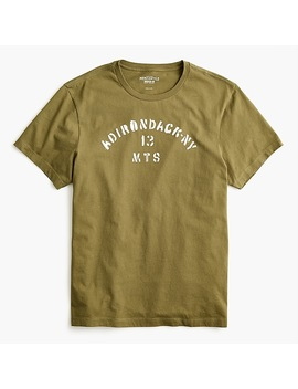 J.Crew Mercantile Adirondack Mountains Graphic T Shirt by J.Crew