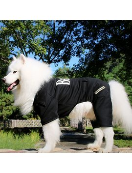Fashion Dog Clothes Winter Medium Large Dog Clothing Pet Jumpsuit Autumn Dogs Coat For Dogs Jacket Pug Labrador Golden Retriver by Pet Mundo