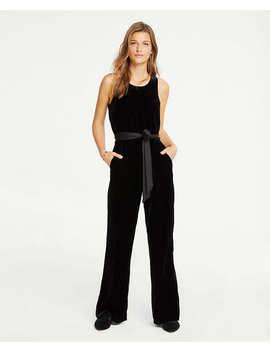 Petite Velvet Halter Jumpsuit by Ann Taylor