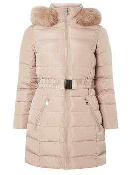 Petite Blush Longline Padded Coat by Dorothy Perkins