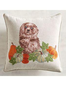 Reggie Dog Mini Pillow by Pier1 Imports