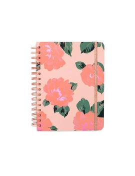 2019 Medium 12 Month Annual Planner   Bellini by Ban.Do