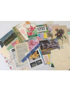 Botanical Junk Journal Kit/Nature/Cof<Wbr>Fee Stained Paper. 60+ Pieces by Ebay Seller