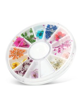Vbestlife Dried Flowers,12 Types Colorful Natural Dried Flowers Set Real Dry Flowers Nail Decoration Manicure Arts,Manicure Dried Flowers by Vbestlife