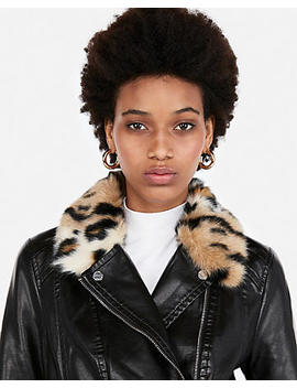 Leopard Collar Moto Jacket by Express