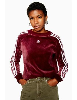 Velour Three Stripe Sweatshirt By Adidas by Topshop