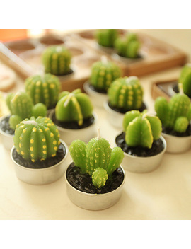 2 Pcs/Lot.Cute Kid's Birthday Mini Cactus Plant Party Candle.Creative Potted Birthday Cake Candles.Party Supplies.Home Decorate by Ali Express