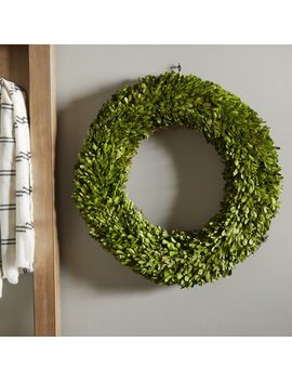 Laurel Foundry Modern Farmhouse Preserved Boxwood Wreath & Reviews by Laurel Foundry Modern Farmhouse