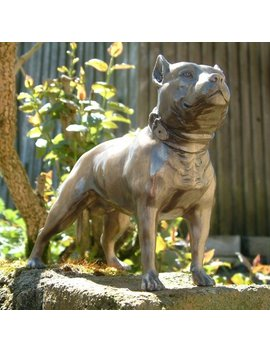 Stunning Pit Bull Pitbull/Staffie Terrier C/C Bronze Ornament/Model Dog 1600 by Fusions