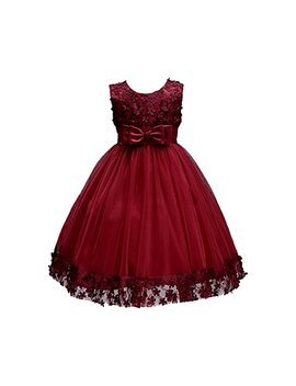 Weileenice 1 14 Years Big/Little Girl Flower Lace A Line Party Dresses by Weileenice