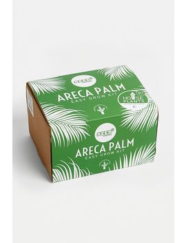 Seed Pantry Areca Palm Easy Grow Kit by Seed Pantry