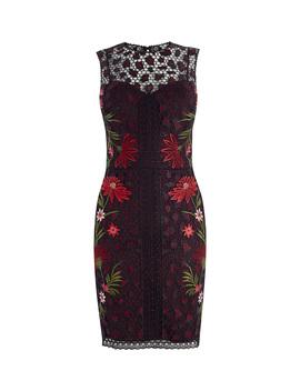 Embroidered Leopard Dress by Dd124 Dd240 Dd239 Dd121 Dd252 Dd03680765