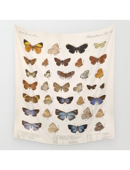 Vintage Scientific Insect Butterfly Moth Biological Hand Drawn Species Art Illustration Wall Tapestry by
