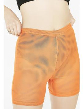 Aayra Shorts by Tiger Mist