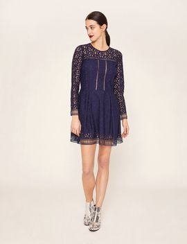 Sheer Lace Fit And Flare by Armani Exchange