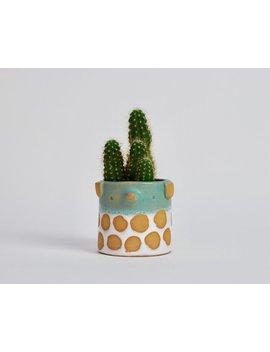 Mini Spotty Dog Plant  Pot // Turquoise &Amp; White by Etsy
