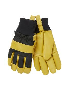 Dawn Patrol Gloves by Helly Hansen