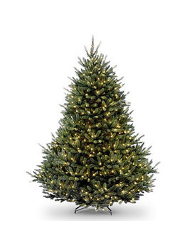 National Tree 7 .5' Natural Fraser Fir Hngd Tree With 1200 Clear Lights by National Tree Company