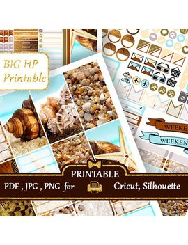 Seashells Big Happy Planner Stickers Weekly Kits Printable Functional Planner Stickers Big Hp Cricut Silhouette Cut Files Discount Coupon by Etsy