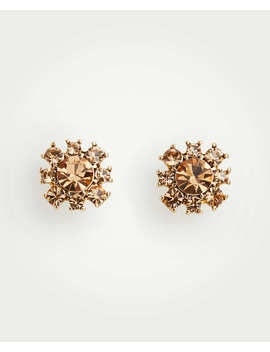 Statement Flower Stud Earrings by Ann Taylor