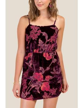 Aaliyah Burnout Velvet Dress by Francesca's