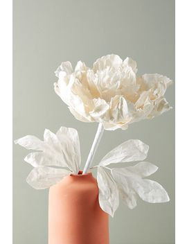 Paper Peony Stem by Anthropologie