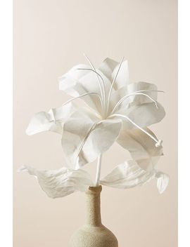 Paper Lilium Stem by Anthropologie