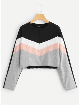 Cut And Sew Crop Sweatshirt by Shein