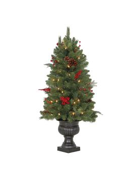 3 Ft. Pre Lit Winslow Fir Potted Artificial Christmas Tree With 196 Tips And 50 Clear Lights by Martha Stewart Living