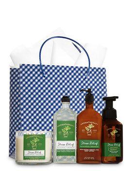 Aromatherapy   Eucalyptus & Spearmint   Ultimate Fragrance Fan Gift Kit    by Aromatherapy