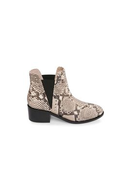 Cade Natural Snake by Steve Madden
