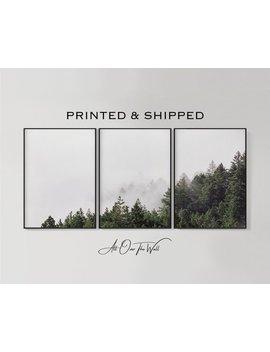 Set Of 3 Giclee Forest Prints, Fog Print, Set Of 3 Forest Prints, 3 Piece Woodland Print, Landscape 3 Piece Print, 3 Piece Forest Print by Etsy