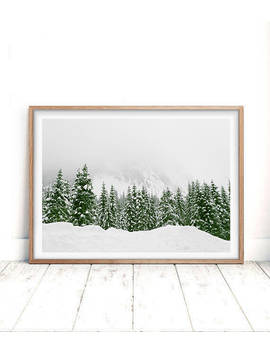 Modern Scandinavian Print, Snow Trees Forest, Nature Wilderness, Winter Landscape Photography, Printable, Scandi Wall Art Decor by Etsy
