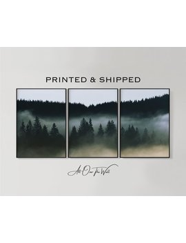Romania, Giclee Forest Print Set Of 3, Dark Forest Print, Forest Photography, Set Of 3 Forest Prints, Landscape 3 Piece, 3 Piece Forest by Etsy