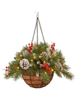 20 In. Frosted Berry Hanging Basket With Battery Operated Warm White Led Lights by National Tree Company