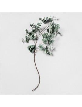 Faux Eucalyptus Stem   Hearth & Hand™ With Magnolia by Shop Collections
