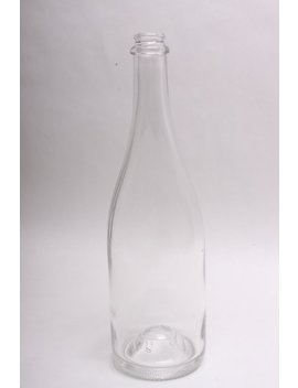 Clear Empty Champagne Bottles For Any Quantity by Etsy