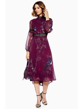 **Blouson Sleeve Skater Dress By Hope & Ivy by Topshop