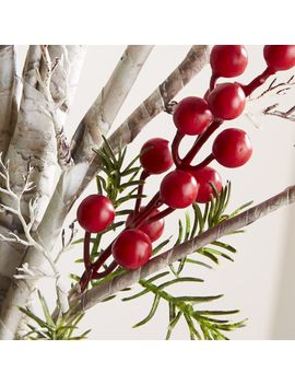 Twig Berry Stem by Crate&Barrel