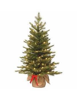 National Tree 3 Foot Feel Real Nordic Spruce Tree With 50 Warm White Battery Operated Led Lights With Timer In Burlap (Pens3 357 30 Bs) by National Tree Company