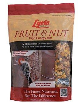 Lyric Fruit & Nut High Energy Wild Bird Mix   5 Lb. Bag by Lyric