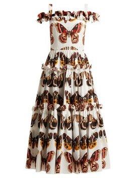 Butterfly Print Cotton Poplin Dress by Dolce & Gabbana