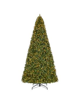 12 Ft. Pre Lit Led Wesley Spruce Artificial Christmas Tree With 1,100 Warm White Lights by Home Accents Holiday