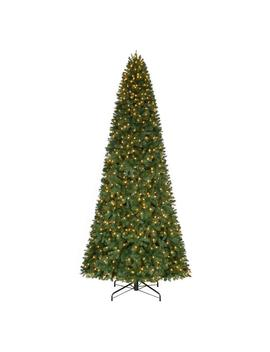 12 Ft. Pre Lit Led Morgan Pine Quick Set Artificial Christmas Tree With Warm White Lights by Home Accents Holiday