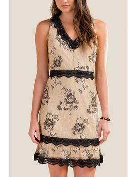 Riley Two Tone Lace Dress by Francesca's
