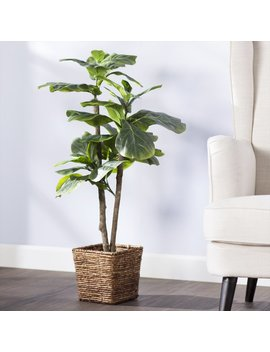 Beachcrest Home Mini Tree In Basket & Reviews by Beachcrest Home
