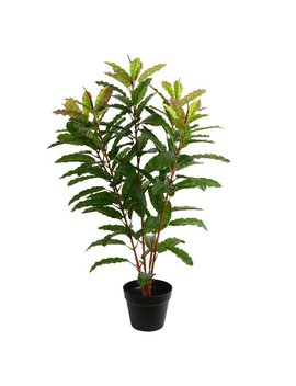 Bay Isle Home Artificial Real Myrtle Touch Floor Foliage Tree In Pot & Reviews by Bay Isle Home